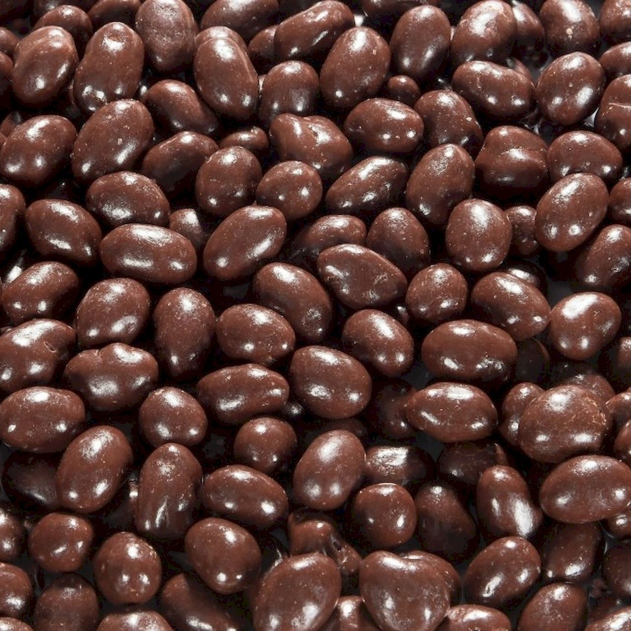 Biologische chocolade pinda's puur