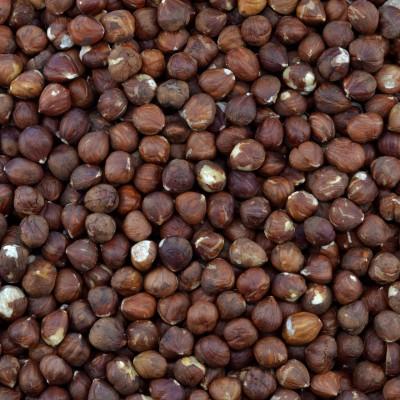 Bruine hazelnoten (raw)