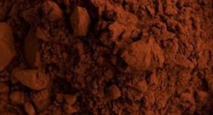 Cacao, de gezonde basis voor chocolade