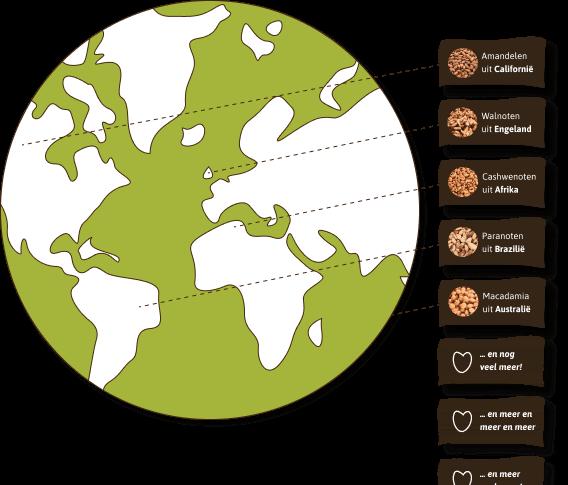 De wereldkaart geeft een beeld waar wij de formidabele en online noten selecteren welke noten u bij ons kunt kopen